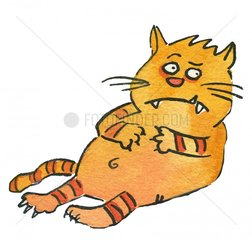 kater Katze
