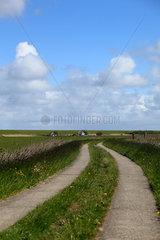 Westerhever  Deutschland  Zufahrtsweg zu einem Bauernhaus