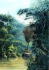 Dampfer auf dem Amazonas