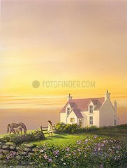 England Cottage Pferde