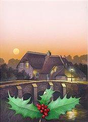 England Cottage Vollmond Stechpalme