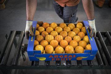Vertrieb von Orangen in Griechenland