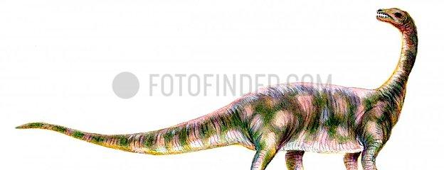 Dinosaurier Rioja S?d-Amerika