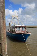 Tuemlauer Koog  Deutschland  kleines Fischerboot im Hafen