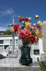 Stintino  Italien  Graeber des Friedhofs von Stintino
