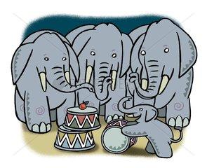 Kleiner Elefant ganz gross
