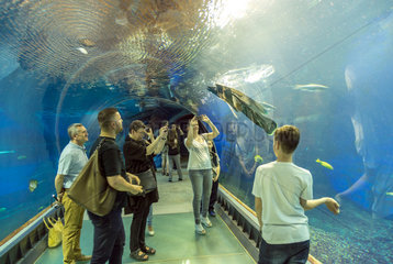 Breslau  Polen  Aquarium von unten im Afrykarium im Zoo Wroclaw