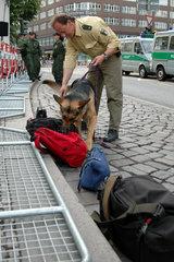 Taschen werden von Spuerhund auf Sprengstoff untersucht