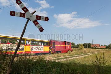 Polen  Mikoszewo  Schmalspurbahn