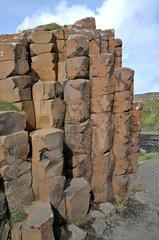 Basaltsaeulen am Giants Causeway