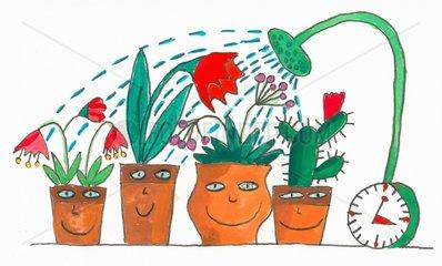Wer giesst die Blumen