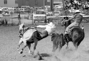 Rodeo Turnier in Window Rock  Arizona