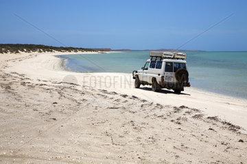 Denham  Australien  Auto am Strand