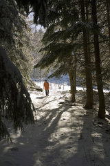Winterlandschaft im Schwarzwald