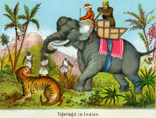 Tigerjagd in Indien  1860