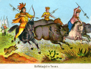 Bueffeljagd in Texas  Indianer  1860