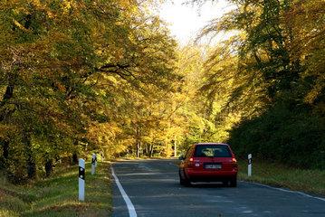 Thale  Deutschland  ein Auto auf einer einsamen Landstrasse im Harzer Vorland