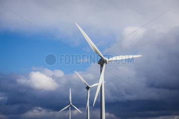Windraeder  Ense  Nordrhein-Westfalen  Deutschland