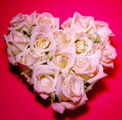 Herz aus Rosen