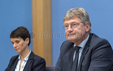 Petry + Meuthen