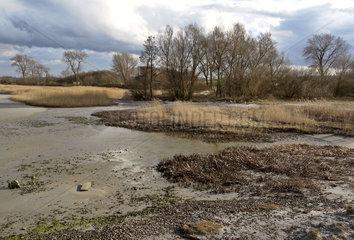 Ostseestrand bei Wohlenhagen  Naehe Wismar
