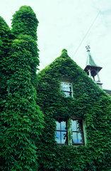 gruenes Hauskleid