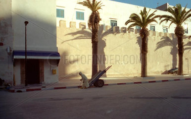 Essaouira Strassenszene Palmen