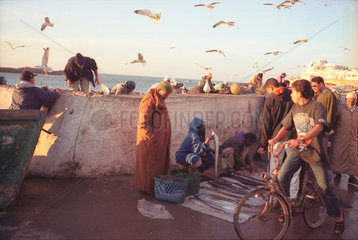 Essaoira Fischmarkt