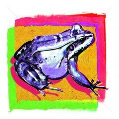Frosch 6 Serie
