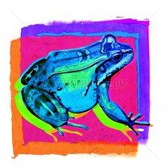 Frosch 5 Serie