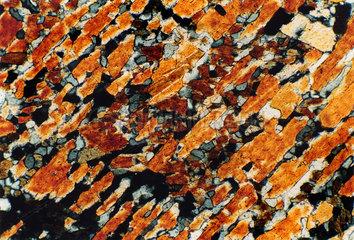 Mikroskopische Aufnahme eines Granat-Hornblende-Gesteins