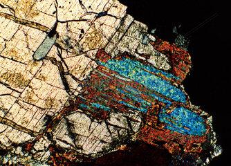 Mikroskopische Aufnahme eines Gneis-Gesteins