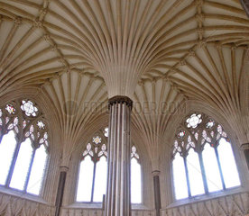 Chapter House  Kathedrale von Wells  Somerset  England