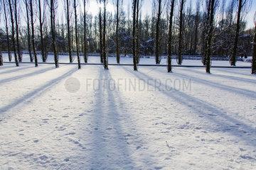 Winter in Berlin