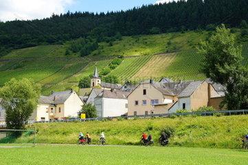 Burg an der Mosel mit Radweg