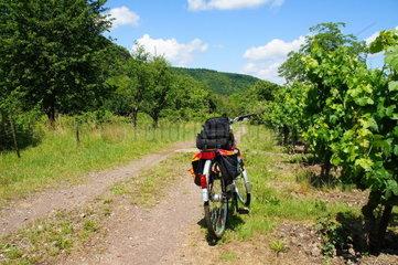 abgestelltes Rad auf dem Feldweg
