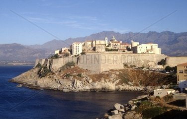 Calvi  old town with citadel  Corsica  France