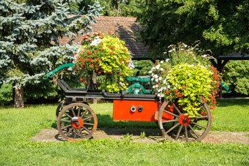 Weissenburg  Frankreich  Blumenbeet auf einer alten Kutsche