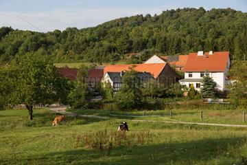 Reinhards  Deutschland  Blick auf den Ort