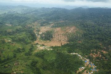 Blick auf die Zerstoerung des Tropischen Regenwaldes
