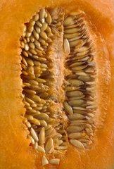 Melon close up