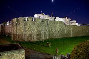 London  Grossbritannien  der Tower of London bei Nacht