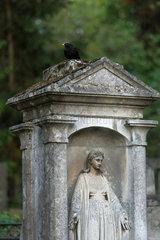 Lemberg  Ukraine  Grab auf dem Lytschakiwski-Friedhof