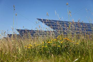 Brandis  Deutschland  Solarkraftwerk Waldpolenz