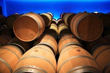 France  Bordeaux  wine barrels