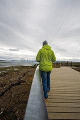 Tourist walking in Pingvellir (Thingvellir) National Park  Iceland