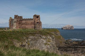 North Berwick  Grossbritannien  Blick auf Tantallon Castle und Bass Rock
