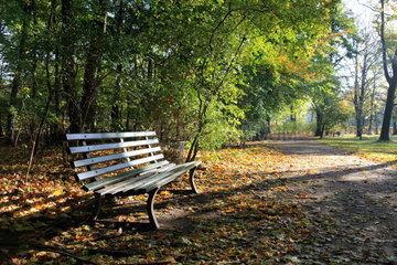Berlin  Deutschland  Herbststimmung im Tiergarten