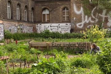 Berlin  Deutschland  TonSteineGaerten - Nachbarschaftsgarten am Mariannenplatz