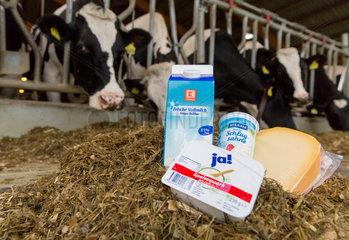 Unna  Deutschland  Milchprodukte in einem Kuhstall